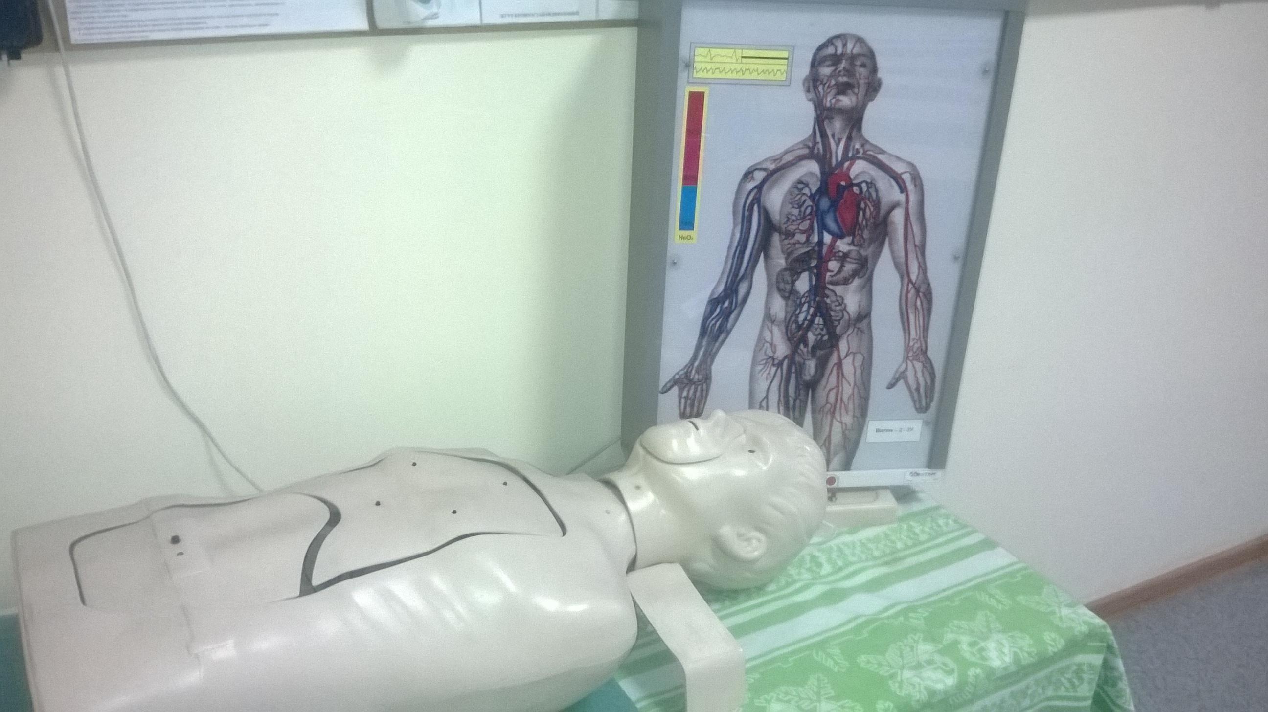Занятия по медицине
