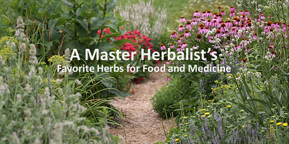A Master Herbalist's Favorite Herbs for Food and Medicine