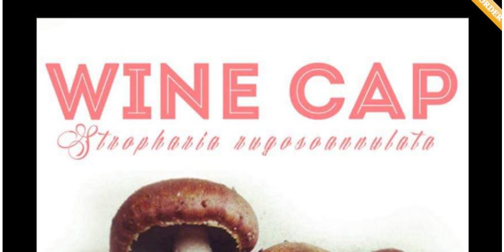 Wine Cap Spore Giveaway!