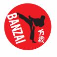 Martial Arts Grading at BSC