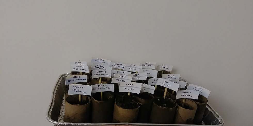 Indoor Seed Starting Discussion