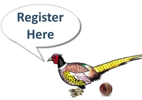 Cricket 2020 Winter and Summer Registration Open!