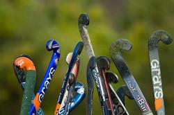 hockey-sticks[1]
