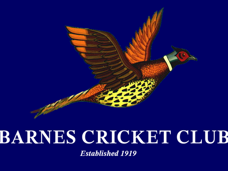 2018 Cricket Colts Coaching