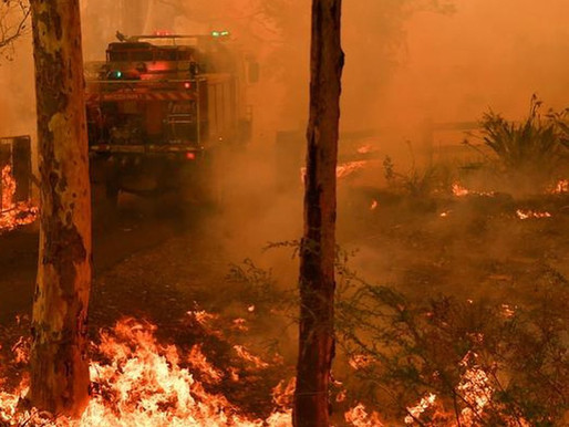 What do the Australian bush fires mean for the planet?