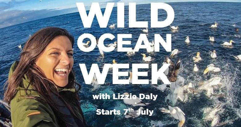 Wild Ocean Week. The UK's Wildest Adventure