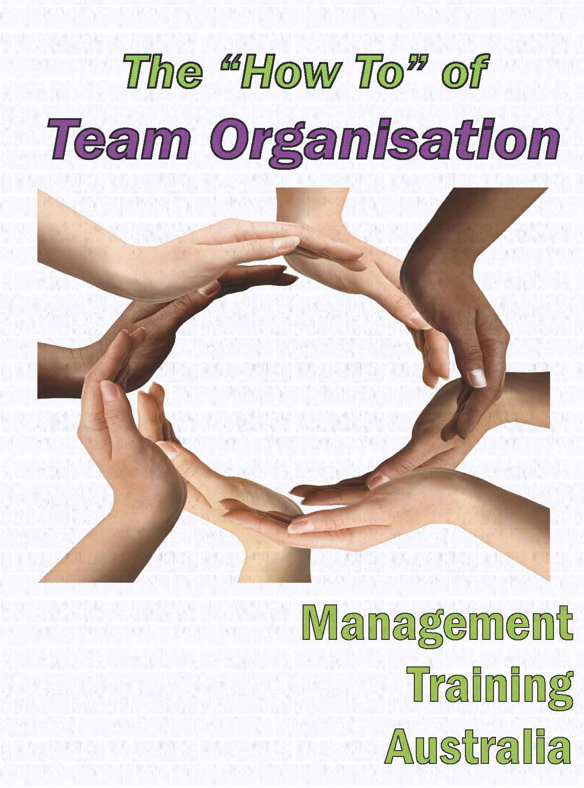 """""""How to"""" of team organisation"""