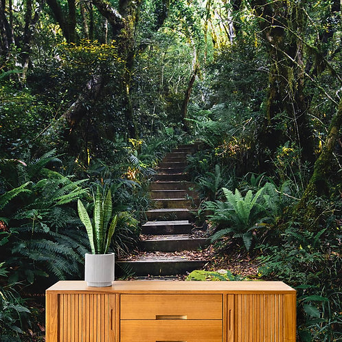 Steps in Forest, Nature Theme Room Wallpaper