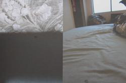 Bedroom 5/6