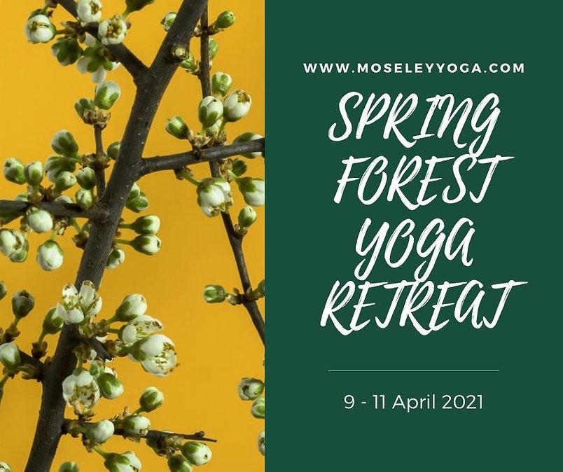 SPRING FOREST YOGA RETREAT (1).jpg