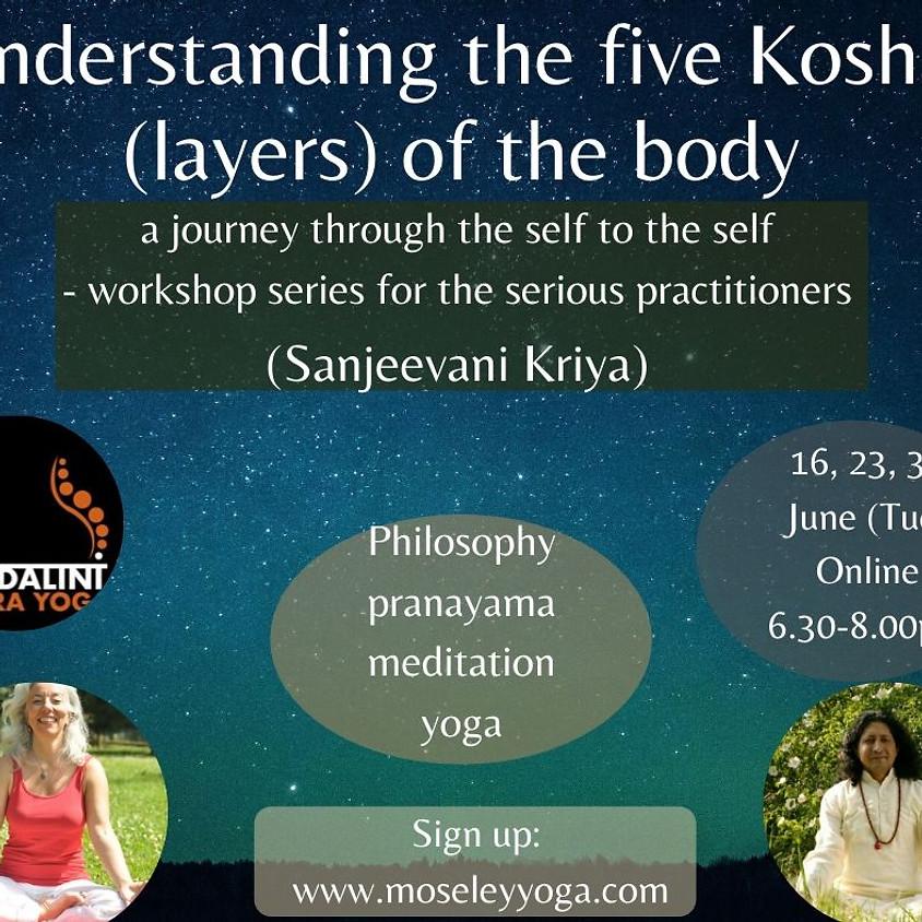 Understanding the five koshas of the body (2nd week)