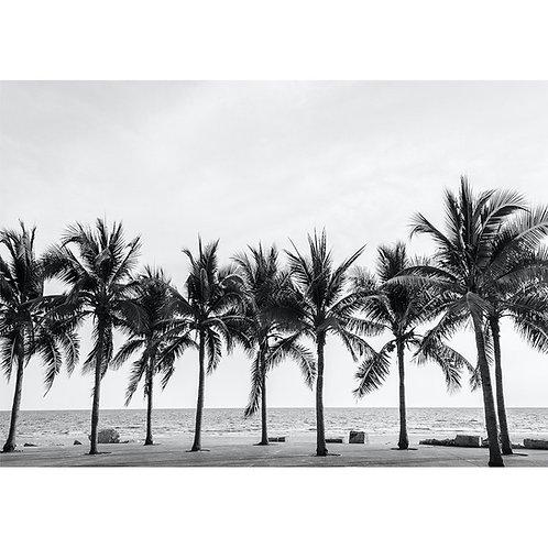 Palm Trees   - MINT Decoupage Paper