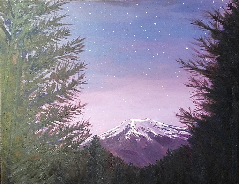 Fuji Night Sky