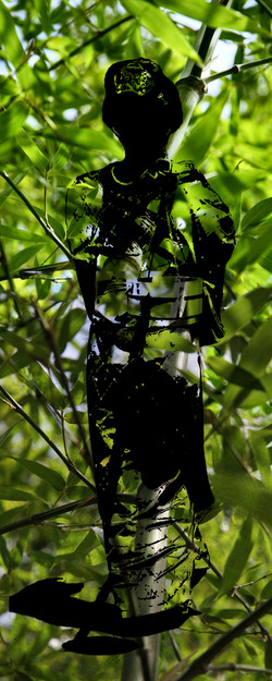 Summer Bamboo kimono black