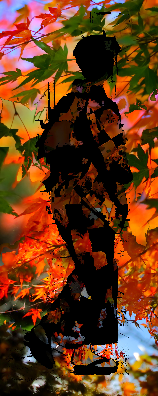 Autumn Kimono, black