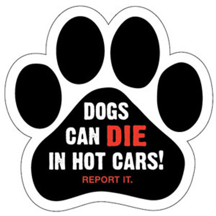 Dogs can DIE in Hot Cars Magnet