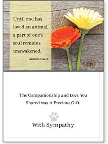 Until One Has Loved An Animal -Thinking of You  - Death Loss of Pet Sympathy Car