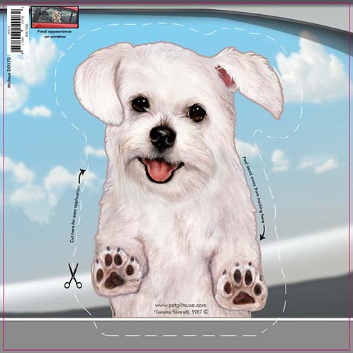 Maltese - Dogs On The Move Window Decal