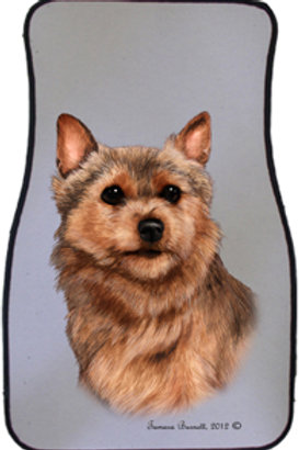Norwich Terrier Best of Breed Car Mats (set of 2)