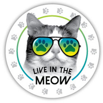 Live in the MEOW Magnet