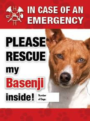 Basenji Pet Safety Decal