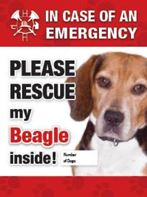 Beagle Pet Safety Decal