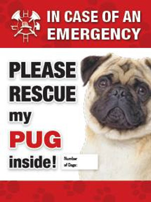 Pug Safety Pet Decal