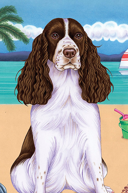 Springer Spaniel -Terry Velour Microfiber Beach