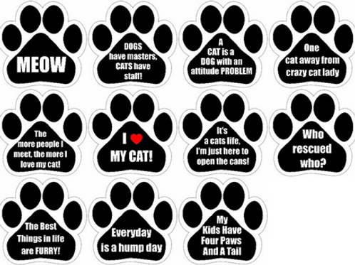 Cat Quote Magnets