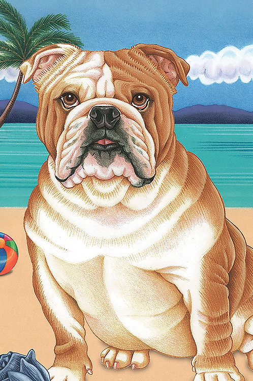 Bulldog -Terry Velour Microfiber Beach Towel