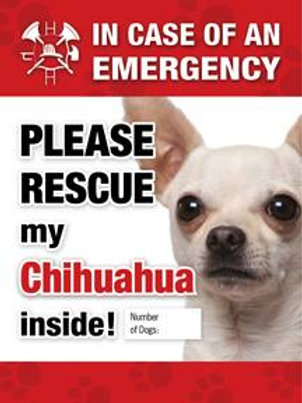 Chihuahua Pet Safety Decal