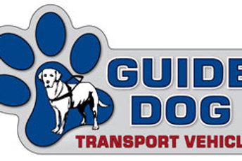 Guide Dog Transport Magnet