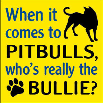 When it comes to Pitbulls, who's really the Bullie? Magnet