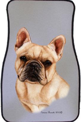 Cream French Bulldog