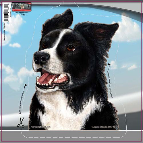 Border Collie - Dogs On The Move Window Decal
