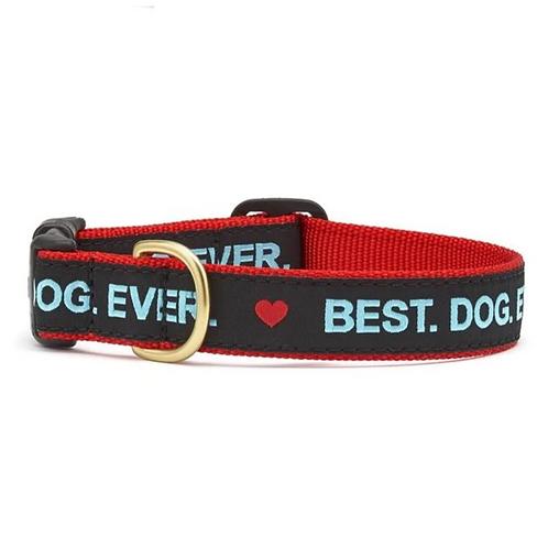 Best Dog Ever Dog Collar