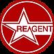 Stareagent logo
