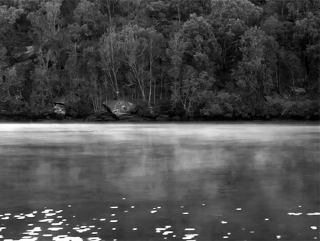 Calabash Bay, Berowra Valley National Park - video
