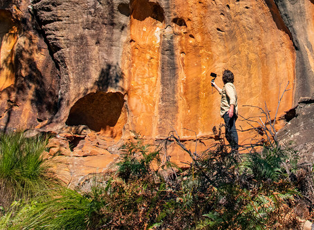 Online tour of Berowra Valley's cliffs - video