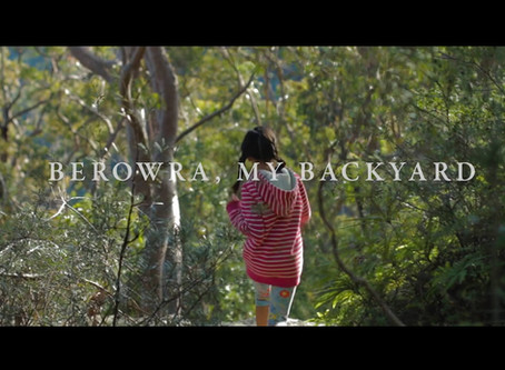 Berowra, my backyard - video