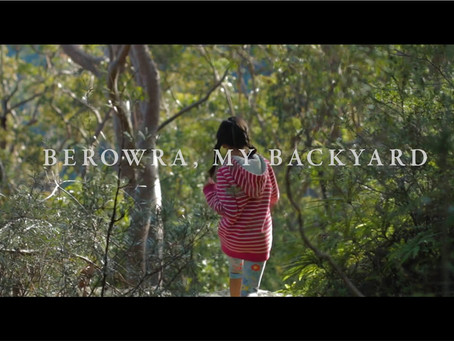 Berowra, my backyard - video