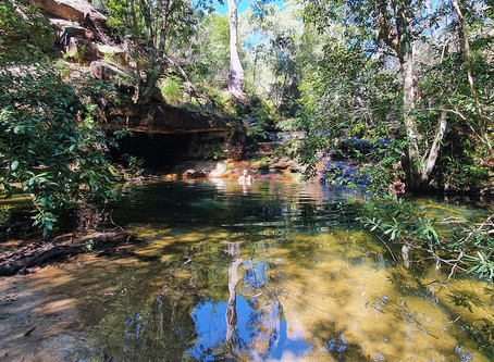Berowra's secret swimming hole - video