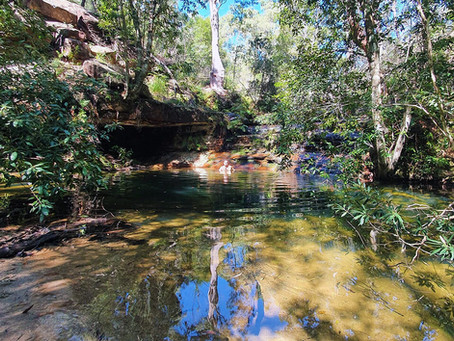 Berowra's secret swimming hole - video