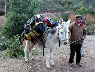Porteo De Equipo | Expediciones Alta Montaña