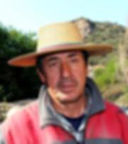 Arriero Mauricio Gonzalo Polanco Garate
