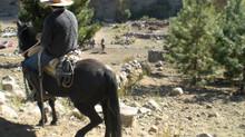 Cabalgatas seguras y autenticas