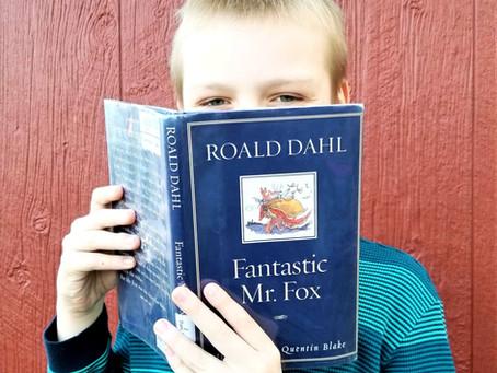 In a Fox's Favor