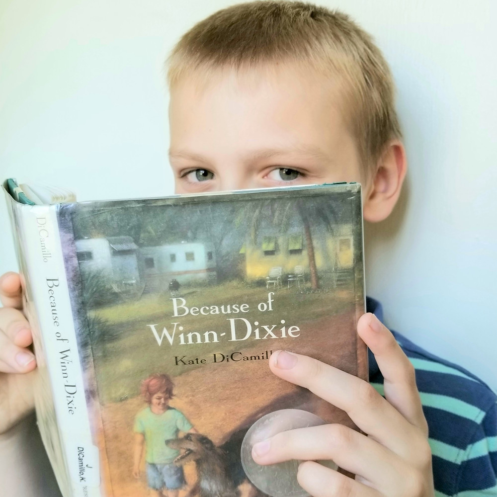 elementary school reading list, 4th grade chapter book summary, winn dixie book review picture