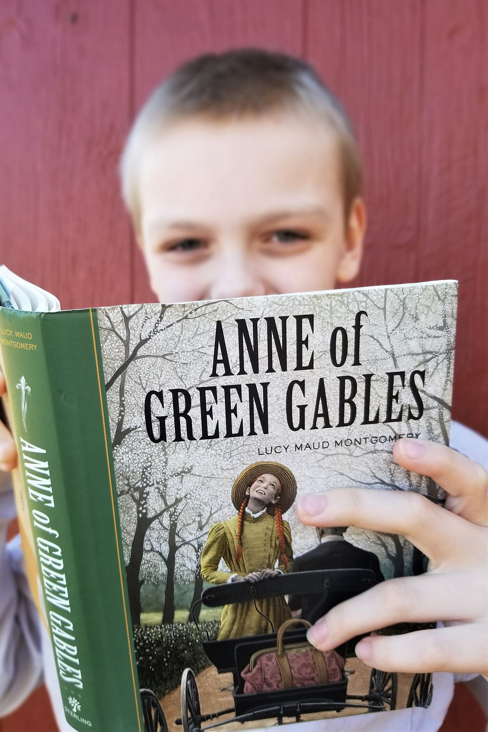 anne of green gables summary, book review blog, elementary school reading list