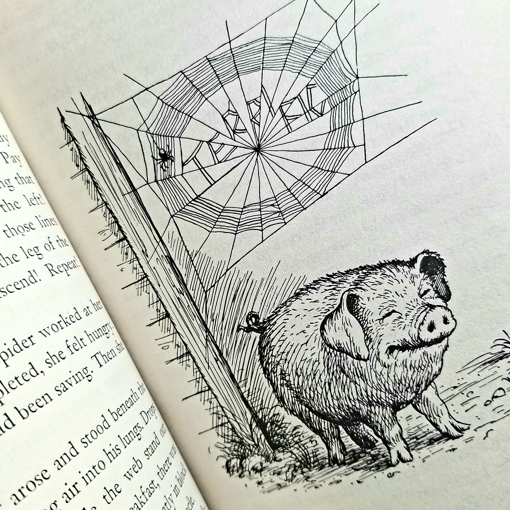 terrific pig drawing, wilbur the pig, words in a web, elementary school reading list